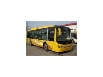 Stock Buses