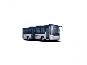 Pure Electric Buses