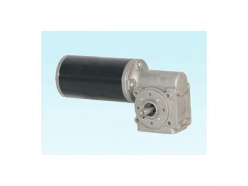 63JW/63ZY125 AC Worm Gear Motor and DC Worm Gear Motor