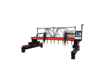 CNC Multi-head Vertical Strip Flame / Plasma Cutting Machine