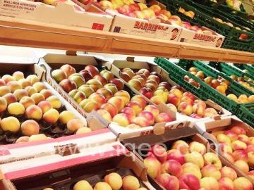 Vegetable Fruit Cold Storage