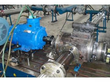 Stainless Steel Lube Pump