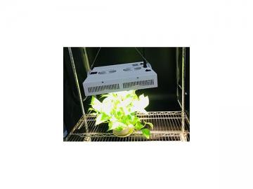 White LED Lighting LED Plant Grow Light