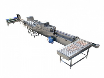 301A Egg Processing  Line with Cleaning & Grading (5000 EGGS/HOUR)