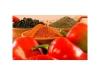 Tomato PowderProcessingLine
