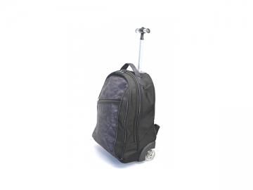 Custom Wheeled Luggage