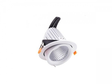 H Series LED Downlight, LED Gimbal Downlight