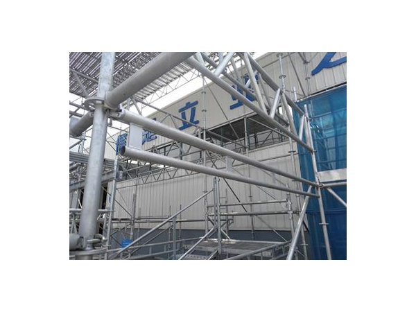 Scaffold Double Ledger