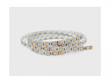 Color Changing RGBW IP62 Rated Flexible LED Strip Light